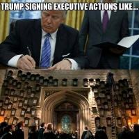 Pmurt executive orders meme.jpeg