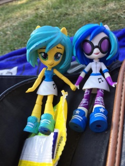 Cwc and vinyl dolls at Cville Pride 2016.jpg